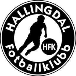 hallingdal logo